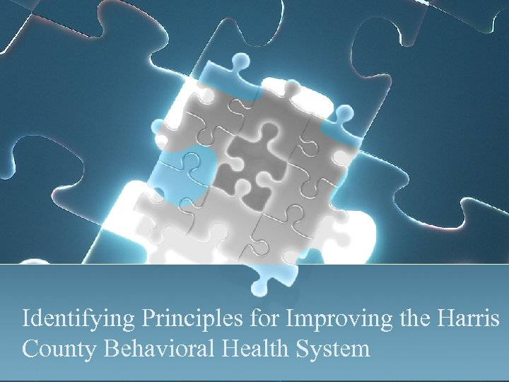Identifying Principles for Improving the Harris County Behavioral Health System