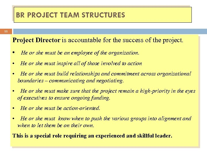 BR PROJECT TEAM STRUCTURES 11 Project Director is accountable for the success of the