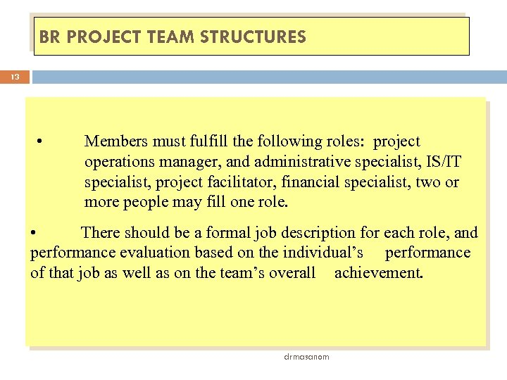 BR PROJECT TEAM STRUCTURES 13 • Members must fulfill the following roles: project operations