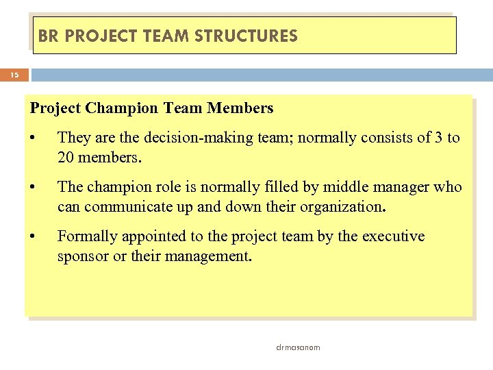 BR PROJECT TEAM STRUCTURES 15 Project Champion Team Members • They are the decision-making