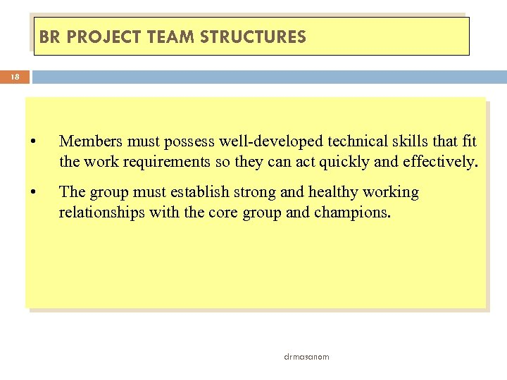 BR PROJECT TEAM STRUCTURES 18 • Members must possess well-developed technical skills that fit