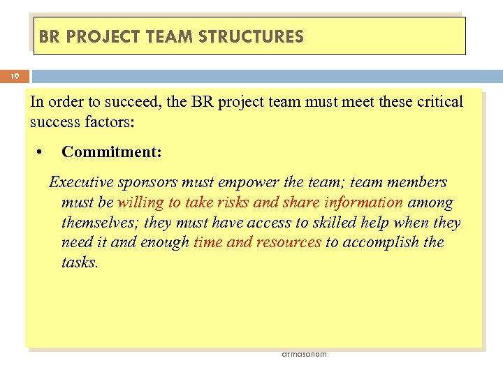 BR PROJECT TEAM STRUCTURES 19 In order to succeed, the BR project team must