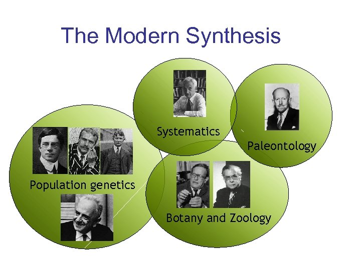 The Modern Synthesis Systematics Paleontology Population genetics Botany and Zoology