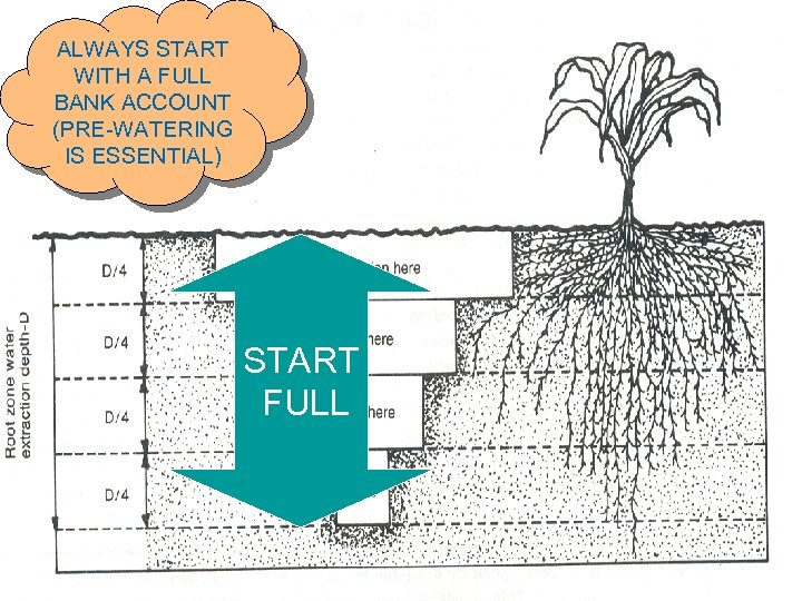 ALWAYS START WITH A FULL BANK ACCOUNT (PRE-WATERING IS ESSENTIAL) START FULL