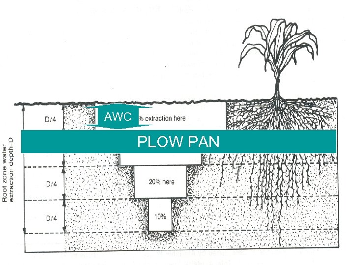AWC PLOW PAN