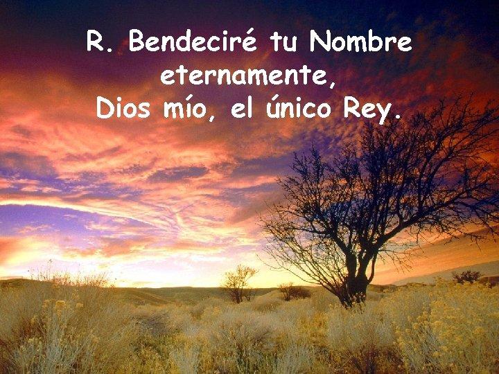 R. Bendeciré tu Nombre eternamente, Dios mío, el único Rey.