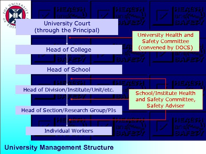 University Court (through the Principal) Head of College University Health and Safety Committee (convened