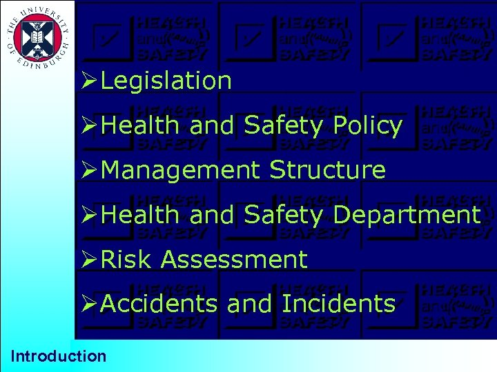 ØLegislation ØHealth and Safety Policy ØManagement Structure ØHealth and Safety Department ØRisk Assessment ØAccidents