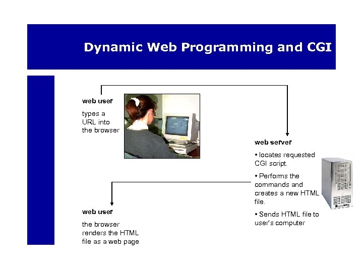 Dynamic Web Programming and CGI web user types a URL into the browser web
