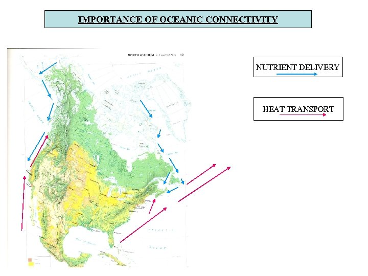 IMPORTANCE OF OCEANIC CONNECTIVITY NUTRIENT DELIVERY HEAT TRANSPORT