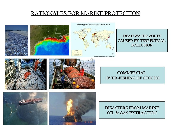 RATIONALES FOR MARINE PROTECTION DEAD WATER ZONES CAUSED BY TERRESTRIAL POLLUTION COMMERCIAL OVER-FISHING OF