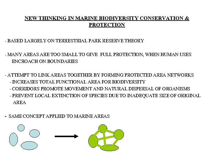 NEW THINKING IN MARINE BIODIVERSITY CONSERVATION & PROTECTION - BASED LARGELY ON TERRESTRIAL PARK
