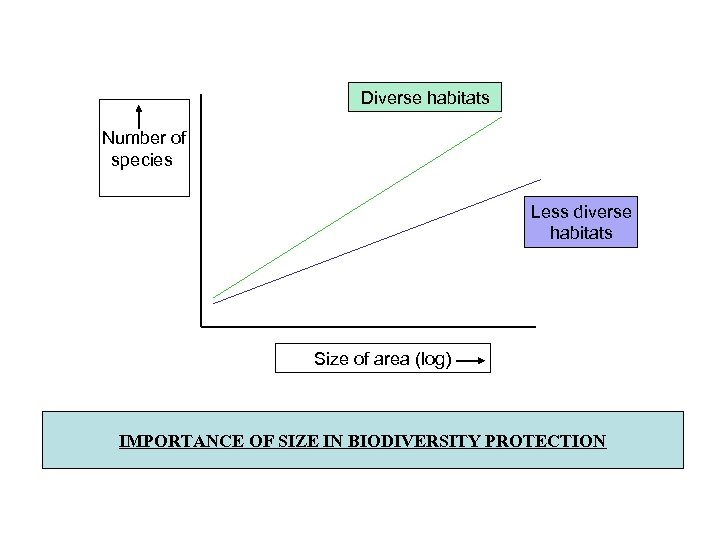 Diverse habitats Number of species Less diverse habitats Size of area (log) IMPORTANCE OF