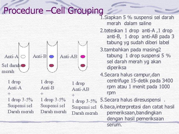 Procedure –Cell Grouping 1. Siapkan 5 % suspensi sel darah merah dalam saline 2.
