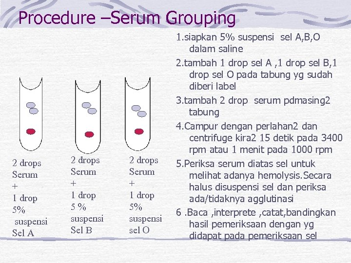 Procedure –Serum Grouping 2 drops Serum + 1 drop 5% suspensi Sel A 2