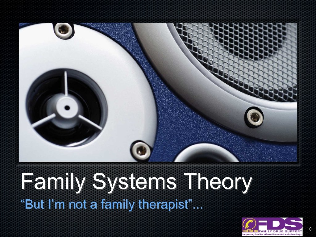 "Family Systems Theory ""But I'm not a family therapist"". . . 8"