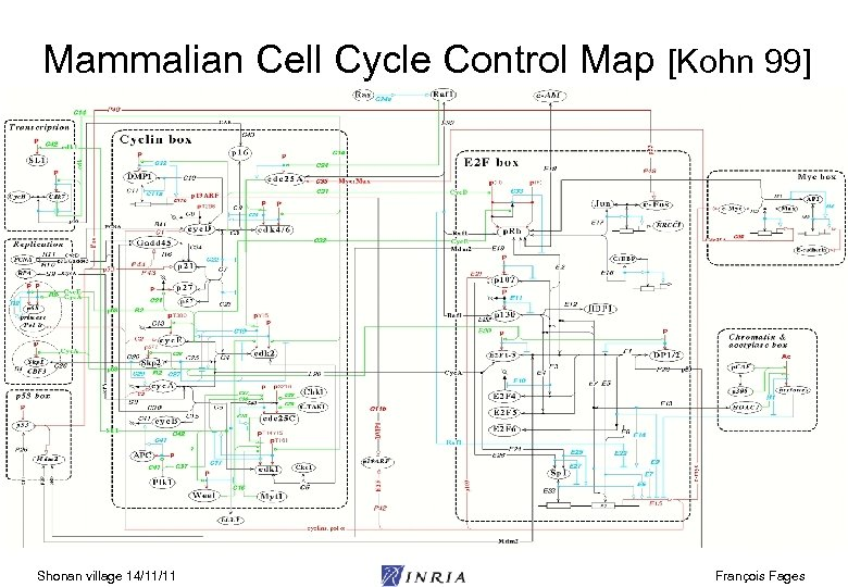 Mammalian Cell Cycle Control Map [Kohn 99] Shonan village 14/11/11 François Fages