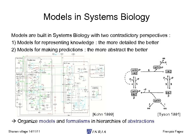 Models in Systems Biology Models are built in Systems Biology with two contradictory perspectives
