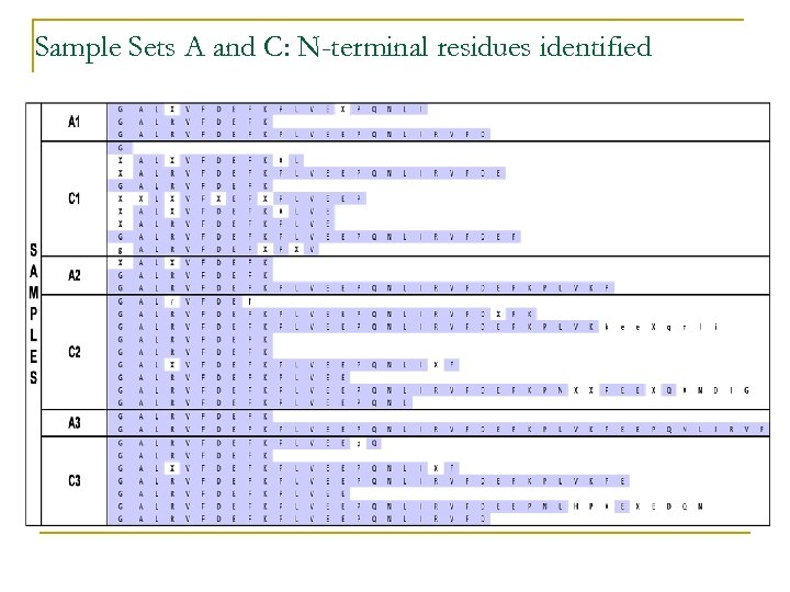 Sample Sets A and C: N-terminal residues identified