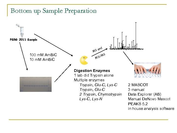 Bottom up Sample Preparation 909. 34 518. 27 631. 36 274. 30 PSRG 2011