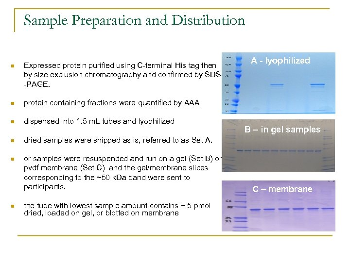 Sample Preparation and Distribution n Expressed protein purified using C-terminal His tag then by