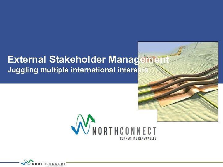 External Stakeholder Management Juggling multiple international interests