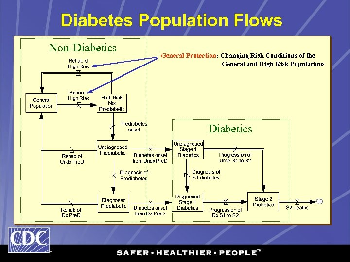 Diabetes Population Flows Non-Diabetics General Protection: Changing Risk Conditions of the General and High