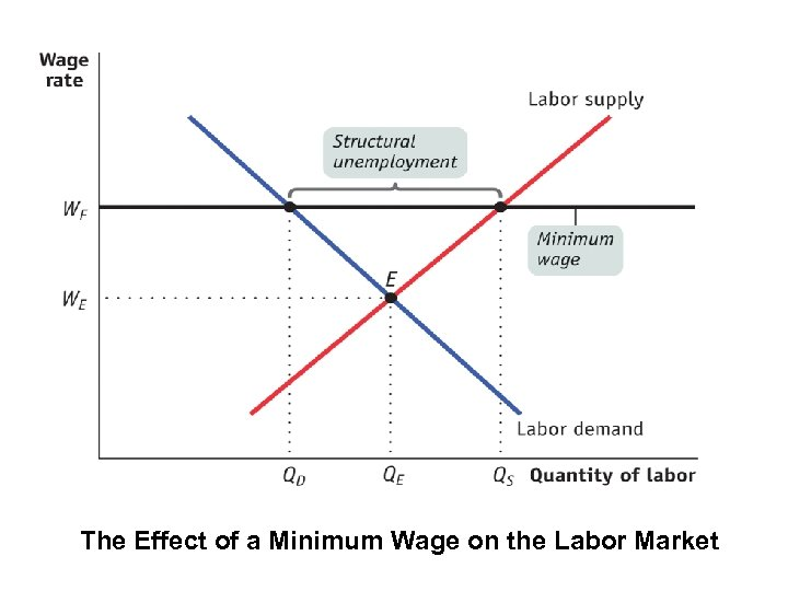 The Effect of a Minimum Wage on the Labor Market