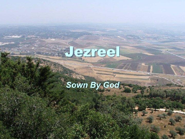 Jezreel Sown By God