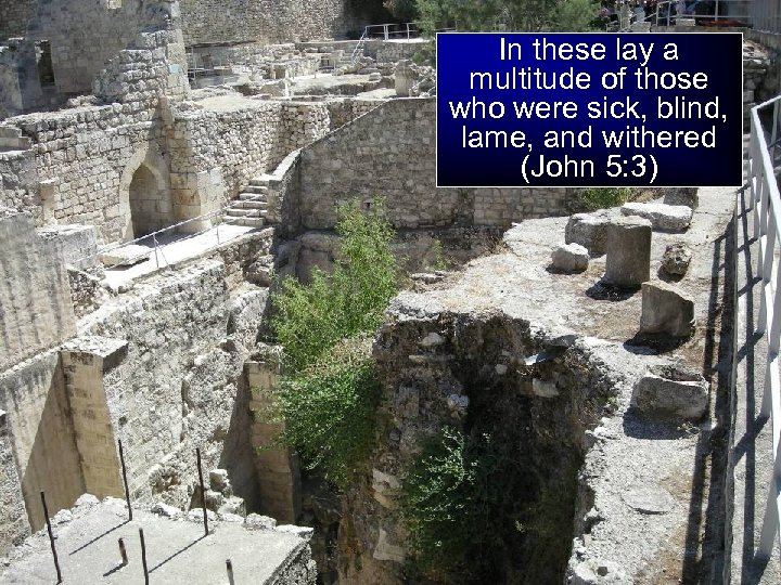 In these lay a multitude of those who were sick, blind, lame, and withered