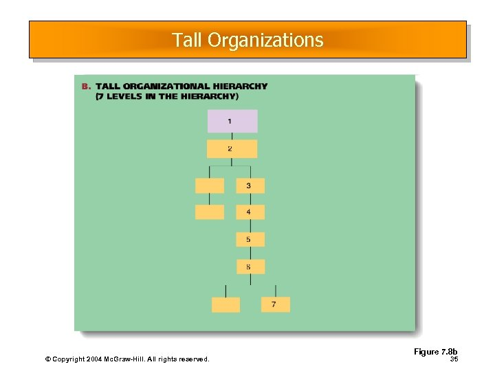 Tall Organizations © Copyright 2004 Mc. Graw-Hill. All rights reserved. Figure 7. 8 b