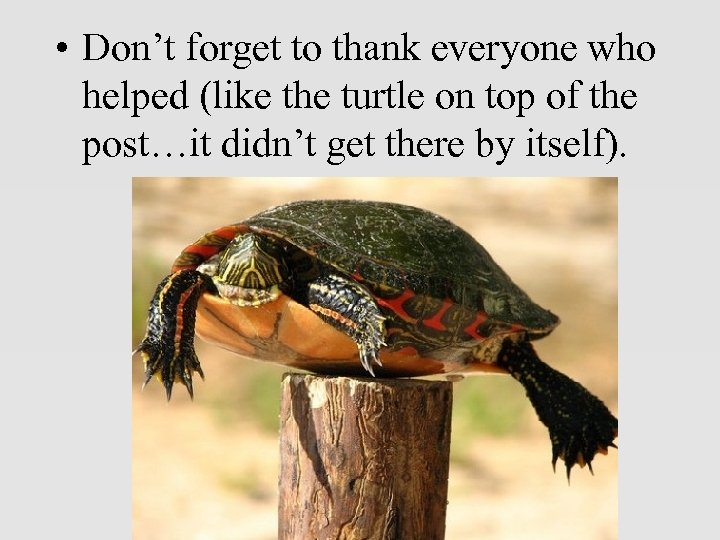 • Don't forget to thank everyone who helped (like the turtle on top