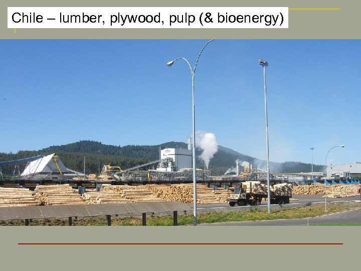 Chile – lumber, plywood, pulp (& bioenergy)