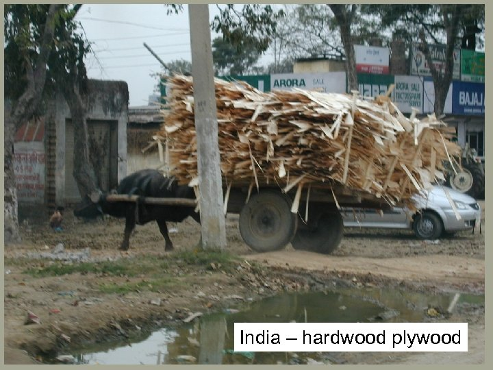 India – hardwood plywood