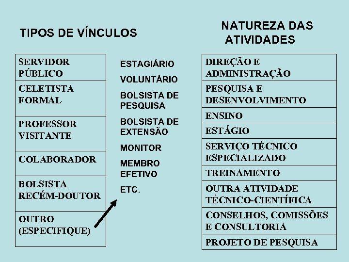 TIPOS DE VÍNCULOS SERVIDOR PÚBLICO CELETISTA FORMAL PROFESSOR VISITANTE ESTAGIÁRIO VOLUNTÁRIO BOLSISTA DE PESQUISA