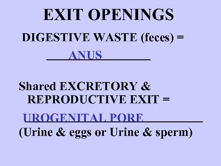 EXIT OPENINGS DIGESTIVE WASTE (feces) = _________ ANUS Shared EXCRETORY & REPRODUCTIVE EXIT =