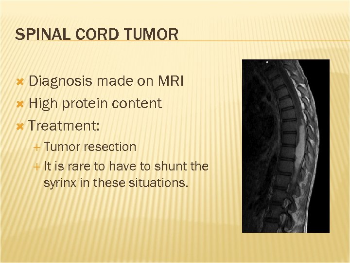 SPINAL CORD TUMOR Diagnosis made on MRI High protein content Treatment: Tumor resection It