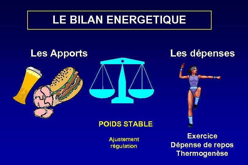 LE BILAN ENERGETIQUE Les Apports Les dépenses POIDS STABLE Ajustement régulation Exercice Dépense de