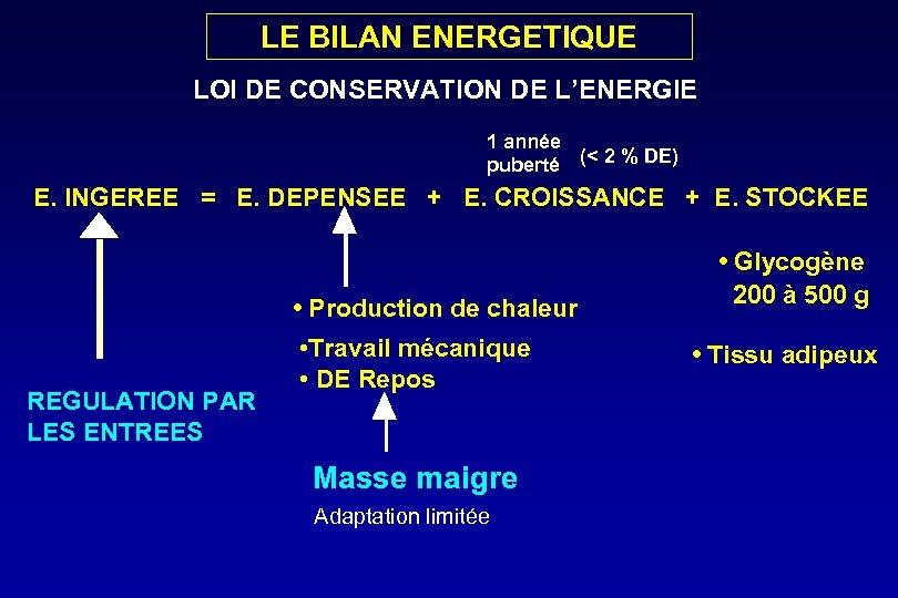 LE BILAN ENERGETIQUE LOI DE CONSERVATION DE L'ENERGIE 1 année puberté (< 2