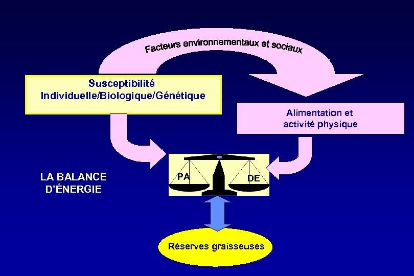 Susceptibilité Individuelle/Biologique/Génétique Alimentation et activité physique LA BALANCE D'ÉNERGIE PA DE Réserves graisseuses