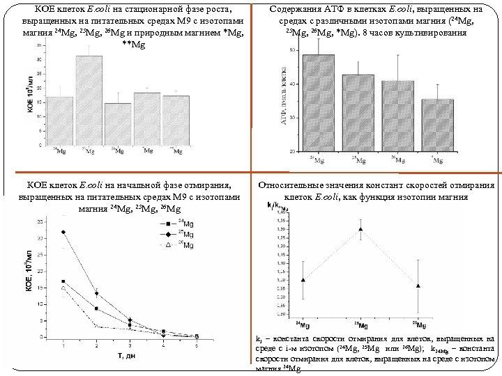 КОЕ клеток E. coli на стационарной фазе роста, выращенных на питательных средах М 9