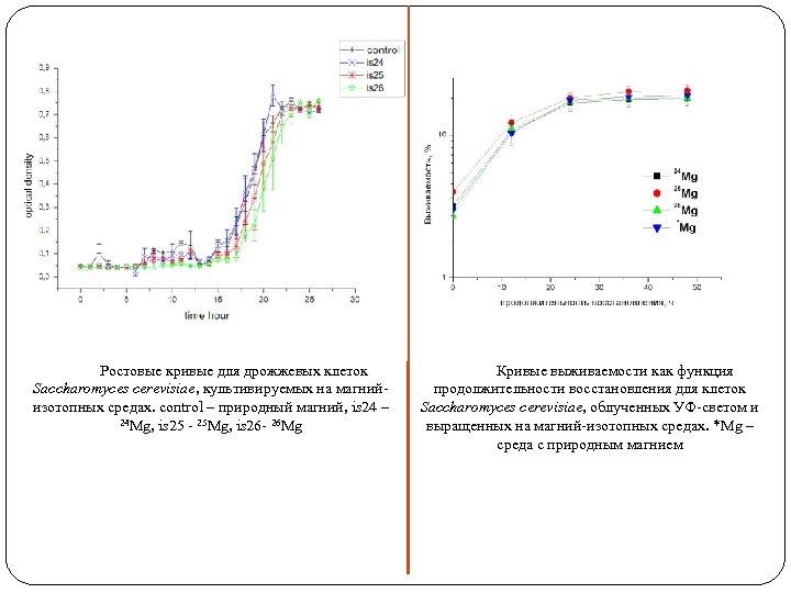 Ростовые кривые для дрожжевых клеток Saccharomyces cerevisiae, культивируемых на магнийизотопных средах. control – природный