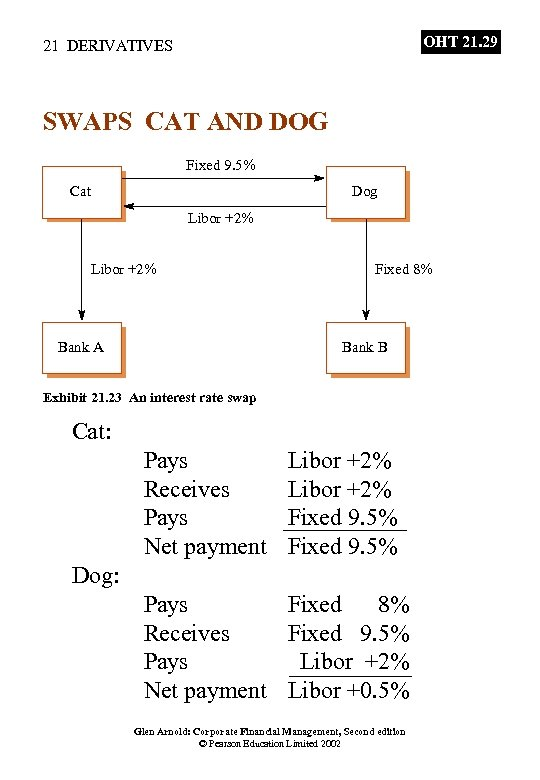 OHT 21. 29 21 DERIVATIVES SWAPS CAT AND DOG Fixed 9. 5% Cat Dog