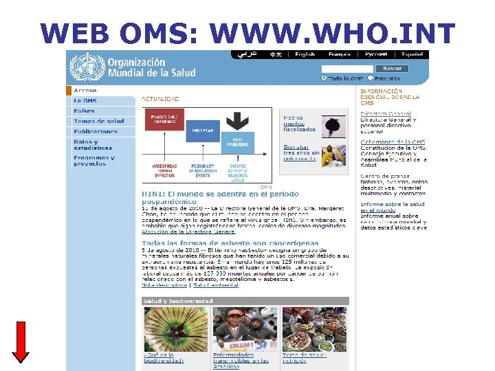 WEB OMS: WWW. WHO. INT