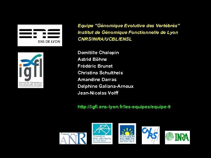 """Equipe """"Génomique Evolutive des Vertébrés"""" Institut de Génomique Fonctionnelle de Lyon CNRS/INRA/UCBL/ENSL Domitille Chalopin"""