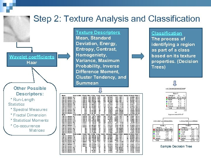 Step 2: Texture Analysis and Classification Wavelet coefficients Haar Texture Descriptors Mean, Standard Deviation,
