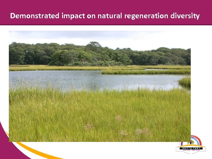 Demonstrated impact on natural regeneration diversity