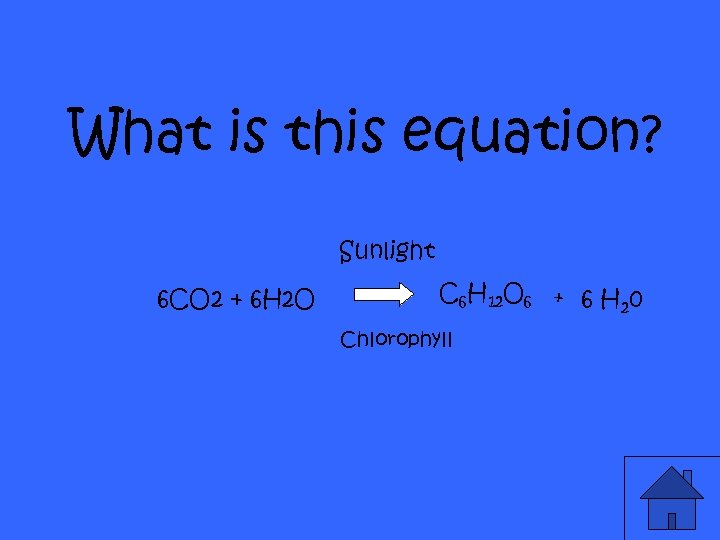 What is this equation? Sunlight 6 CO 2 + 6 H 2 O C
