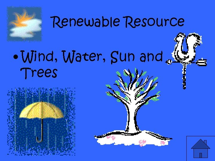 Renewable Resource • Wind, Water, Sun and Trees