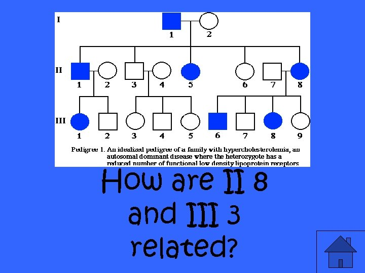 How are II 8 and III 3 related?